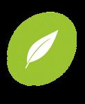 Feuille Verte Icon